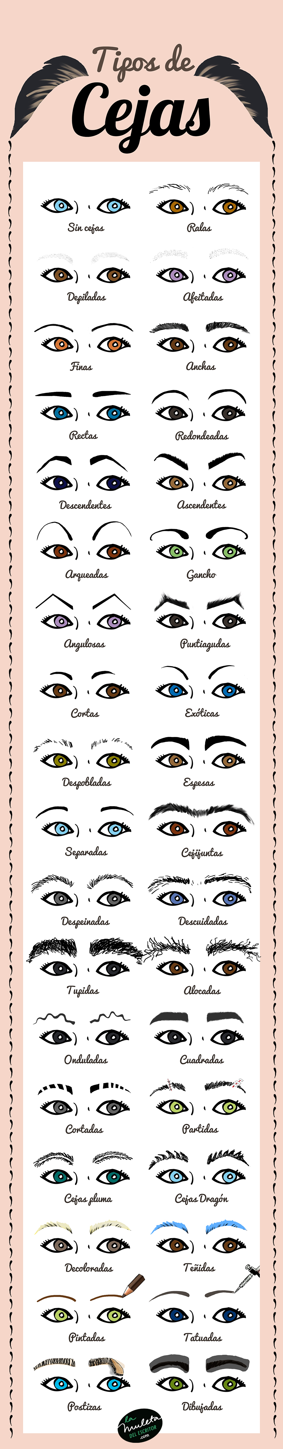 tipos de cejas