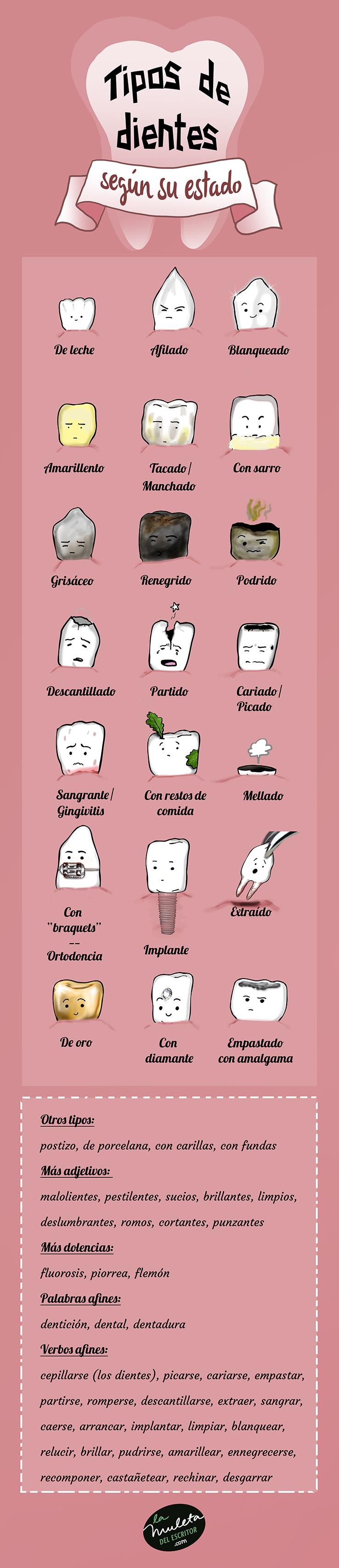 tipos dientes según estado