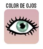 boton color de ojos