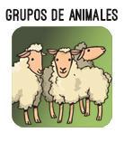 boton grupos animales